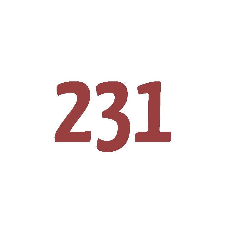231 Model